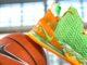 Nike LeBron 18 FAMU PE Florida AM University Athletics