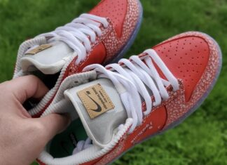 Stingwater Nike SB Dunk Low 2021