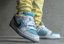 FTC Nike SB Dunk Low DH7687-400 2021 On-Feet