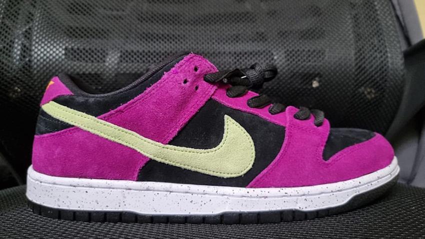 Nike SB Dunk Low ACG Terra Release Date Info